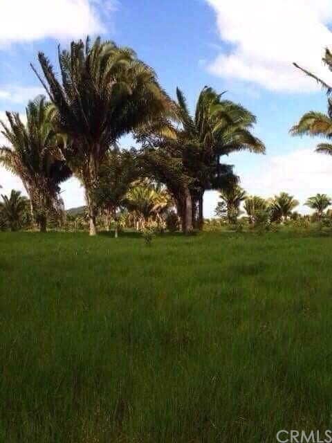 0 Sector C CHOCON NACIONAL LIVINGSTON IZABAL Outside Area (Outside U.s.) Foreign Country, OS 0 - MLS #: IV18021035
