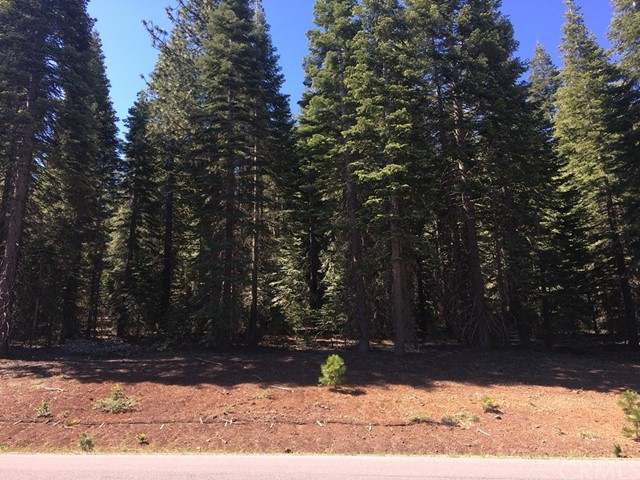 Single Family for Sale at 217 Snowy Peak Way Lake Almanor, California 96137 United States