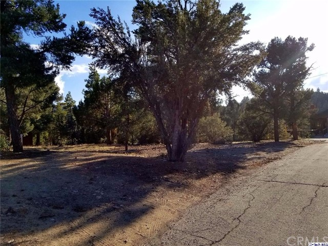 0 E Pioneer Lane Big Bear, CA 92314 - MLS #: BB17279174
