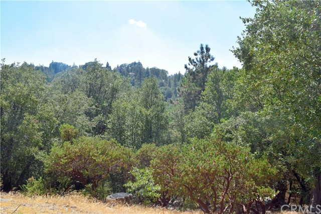 1 Lovers Lane Rimforest, CA 0 - MLS #: SW17209649