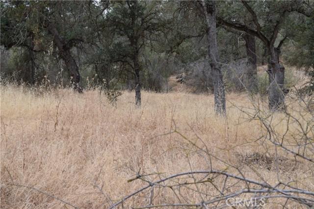 0 Long Hollow Coarsegold, CA 93614 - MLS #: YG17179835
