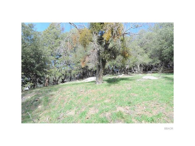 0 Mojave River Road Cedarpines Park, CA 92322 - MLS #: EV17153148