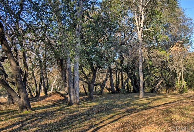 18601 Stallion Drive Red Bluff, CA 96080 - MLS #: PA18291634