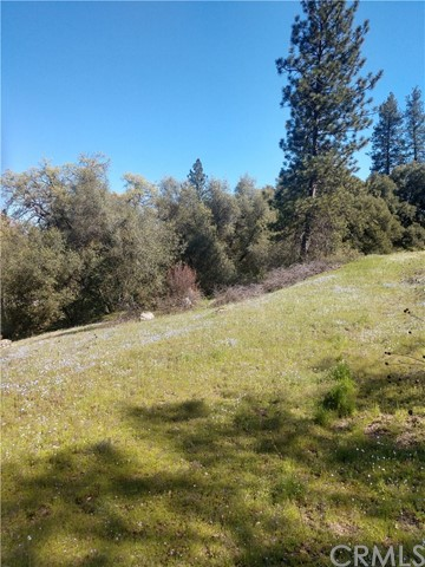 0 Meadowview Drive, Oakhurst, CA, 93644