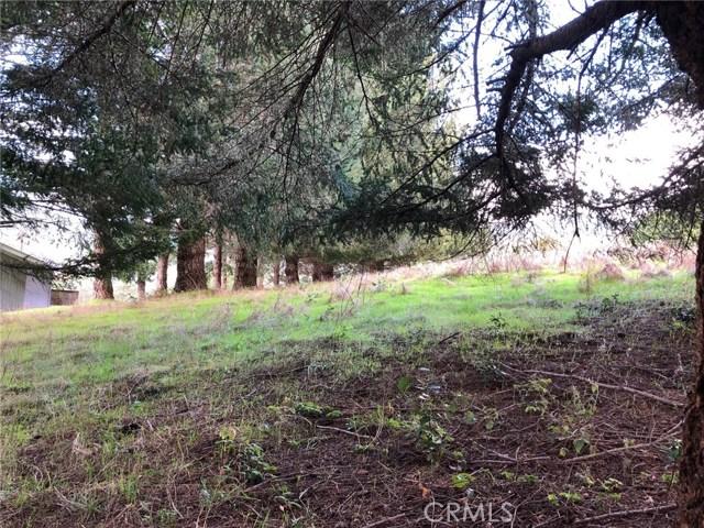 542 Redwood Road, Shelter Cove CA: http://media.crmls.org/medias/0542f41b-d1a6-40cf-b11a-2e23da99b595.jpg