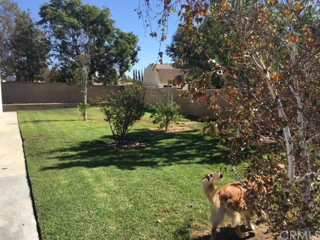 4096 Equestrian Lane, Norco CA: http://media.crmls.org/medias/058f4912-87ac-4109-84be-e5f817c859eb.jpg