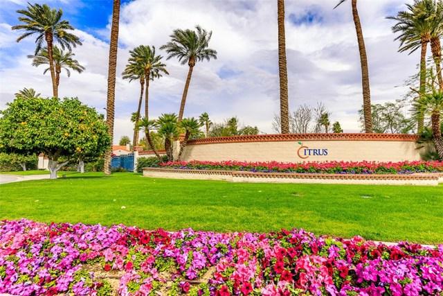 79000 CITRUS, LA QUINTA, CA 92253  Photo 3