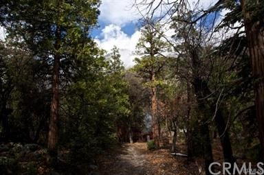 40707 Valley Of The Falls Drive Forest Falls, CA 92339 - MLS #: EV18237592