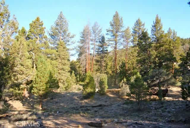 0 RAINBOW Angelus Oaks, CA 0 - MLS #: EV16716499