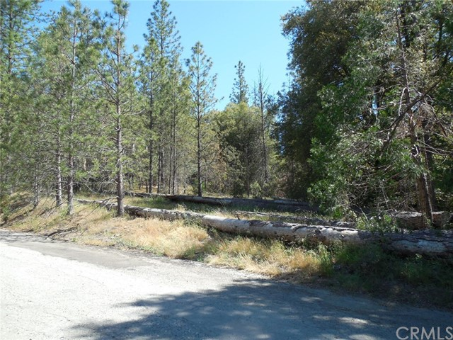 2428 Speckled Court Mariposa, CA 95338 - MLS #: MP18132275