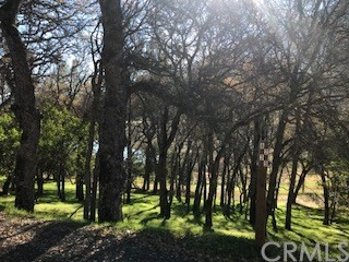 8239 Little Borax Lake Road Kelseyville, CA 95451 - MLS #: LC17274349