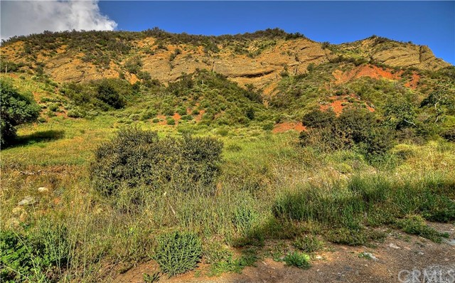 Land / Lots for Sale at 20 Williams Canyon Rd St Silverado, California 92676 United States