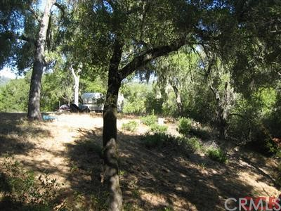 8405 Fawn Lane, Paso Robles CA: http://media.crmls.org/medias/07ffa5ad-b976-4f8a-9d1b-8c69c37068d8.jpg