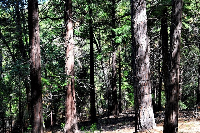 0 Mojave River Road Cedarpines Park, CA 92322 - MLS #: EV17229327