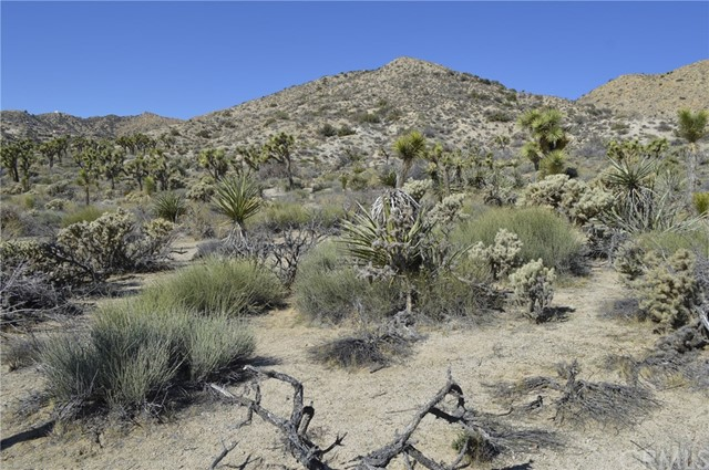 7400 Fairway Drive, Yucca Valley CA: http://media.crmls.org/medias/0953493c-2c3f-4476-8069-ae23443ad18b.jpg
