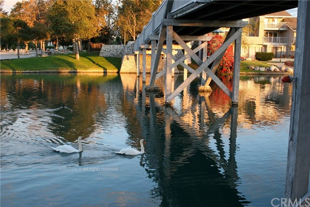 52 Greenbough, Irvine, CA 92614 Photo 21