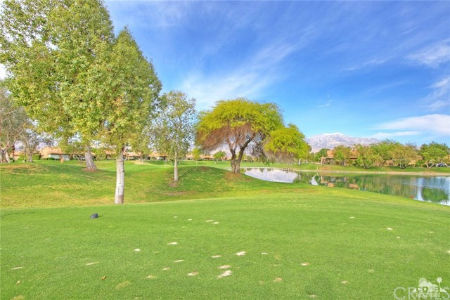 29 Oak Tree Drive Rancho Mirage, CA 92270 - MLS #: 217012494DA
