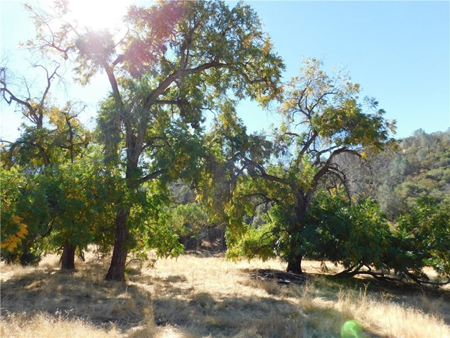 Land for Sale at 661 Acre 661 Acre Ahwahnee, California 93601 United States