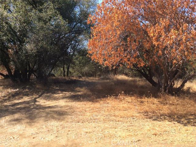 0 Moonray Lane, Oakhurst CA: http://media.crmls.org/medias/0a9bea1d-a87a-4de2-a06a-79660db0053c.jpg