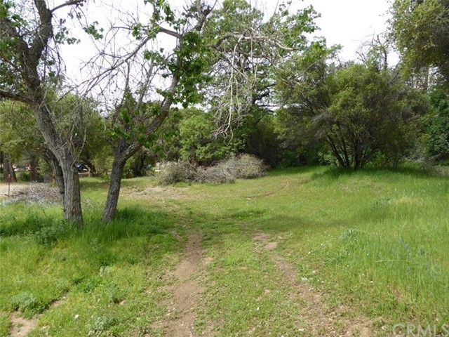 2.01 AC Road 233, North Fork, CA, 93643