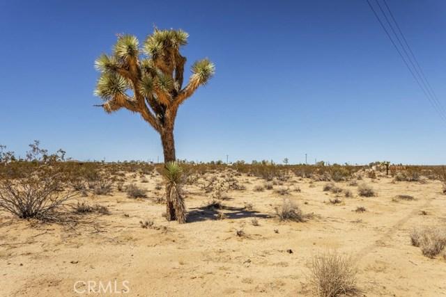 62695 Sunny Sands Drive, Joshua Tree CA: http://media.crmls.org/medias/0b2d0611-7eb8-48ca-8a56-8ef0316ff18b.jpg