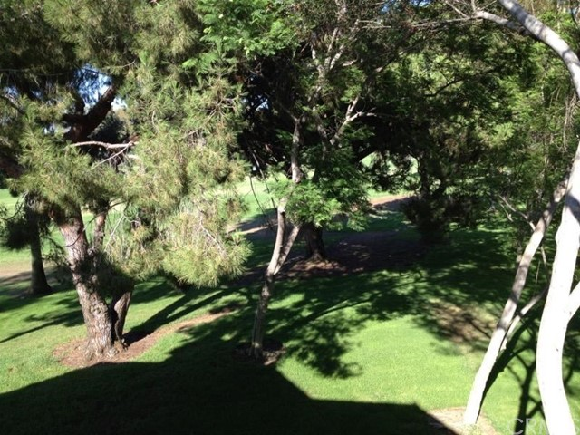 17 Verde, Irvine, CA 92612 Photo 5