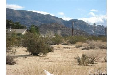 69237 Old Dale Road, 29 Palms, CA, 92277