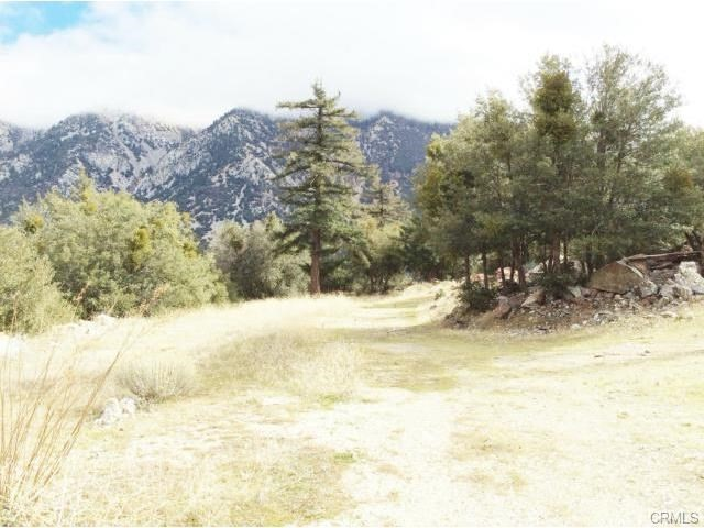 0 Glendora Ridge Rd, Mt Baldy CA: http://media.crmls.org/medias/0cb3ef98-06cb-4608-87de-38ff6203f8ac.jpg