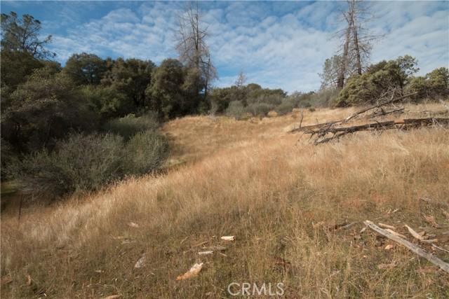 4907 Stumpfield Mountain Road, Mariposa CA: http://media.crmls.org/medias/0ceabb5a-19c6-4cc1-a877-bd7e62afb08e.jpg