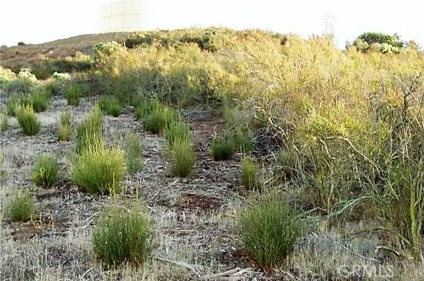 0 Green Oak, Temecula, CA  Photo 6