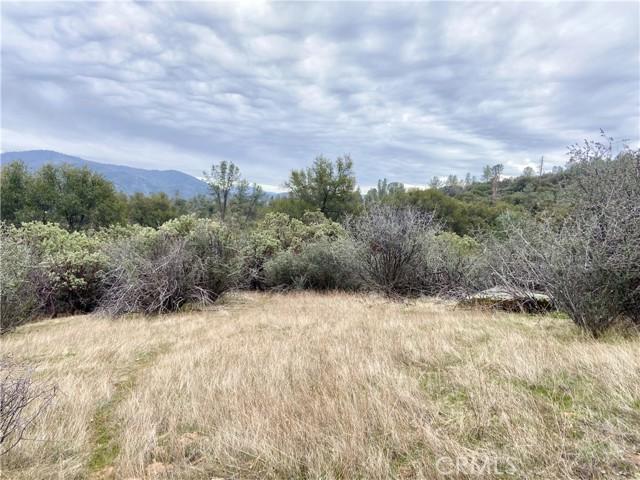 4907 Stumpfield Mountain Road, Mariposa CA: http://media.crmls.org/medias/0e7051cd-c40f-4d3b-846e-55570bd4facb.jpg