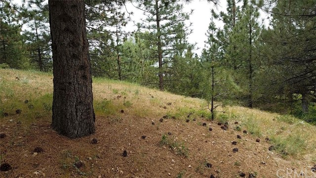 0 Pixie Drive Running Springs Area, CA 92382 - MLS #: EV17077253