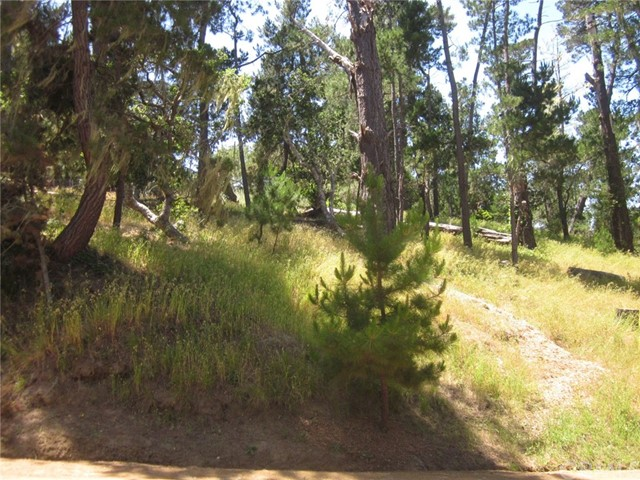 0 Burton Circle Cambria, CA 93428 - MLS #: SP18097625