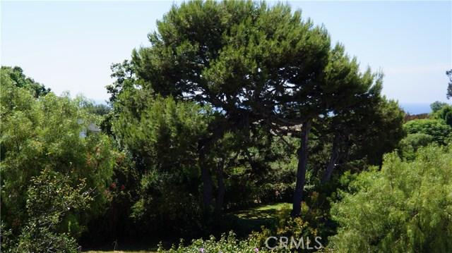 736 Cloyden Road  Palos Verdes Estates CA 90274