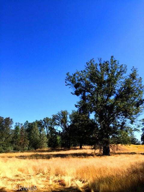 5887 Vineyard Lane, Mariposa CA: http://media.crmls.org/medias/10a794c4-fc6c-4313-88f9-25b0e139ca31.jpg