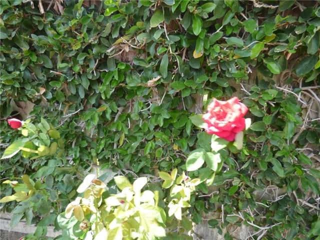 30833 Loma Linda Rd, Temecula, CA 92592 Photo 20