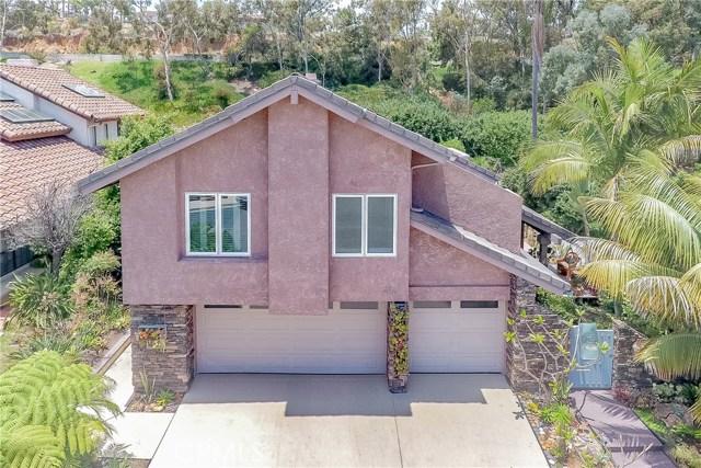 272  Via Villena, Encinitas, California