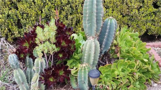2764 Serrano Road San Bernardino, CA 92405 - MLS #: CV18045975