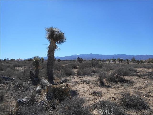 0 Nevada, Phelan CA: http://media.crmls.org/medias/13f8708f-3515-4a08-b781-caf19ab5f6c7.jpg