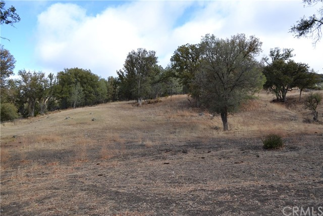 20755 Coalinga Road, Outside Area (Inside Ca) CA: http://media.crmls.org/medias/1459aec0-a17c-4edf-8928-87c598db6ff6.jpg