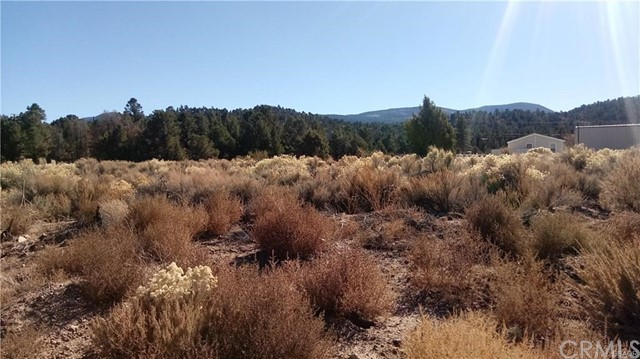 0 Lakeview Lane Big Bear, CA 92314 - MLS #: PW18268157