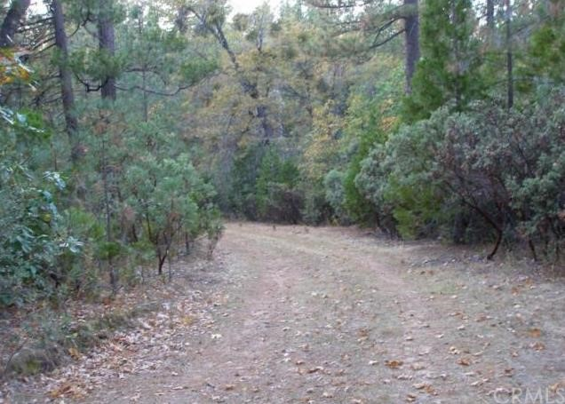0 Graystone Lane, Berry Creek CA: http://media.crmls.org/medias/16497184-eafd-47ac-b0ab-3c8a77faa1d4.jpg