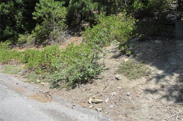Single Family for Sale at 71 Yosemite West Yosemite, California 95389 United States