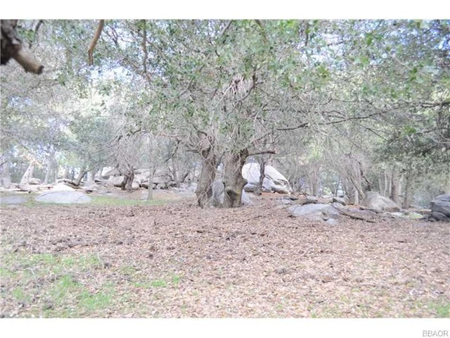 0 Mojave River Road, Cedarpines Park CA: http://media.crmls.org/medias/17d1e3d5-12bb-4872-bae7-ce55934f0b0a.jpg