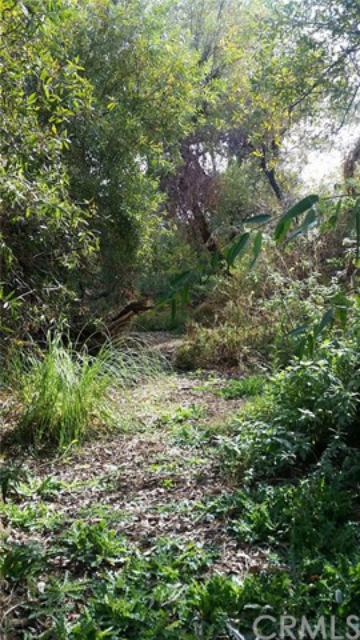 0 Rancho Mirlo Road, Wildomar CA: http://media.crmls.org/medias/17fc13c4-a94b-4d8f-bf14-3757b3d230bd.jpg