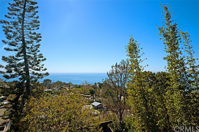 22172 RICO Road, Laguna Beach CA 92651