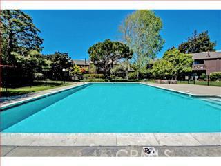 124 TREE FROG Lane, Santa Cruz CA: http://media.crmls.org/medias/19c3a5f4-3056-4e3b-b466-7aec51dbec7b.jpg