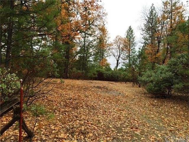 Land for Sale at 8824 Cohasset Road Cohasset, California United States