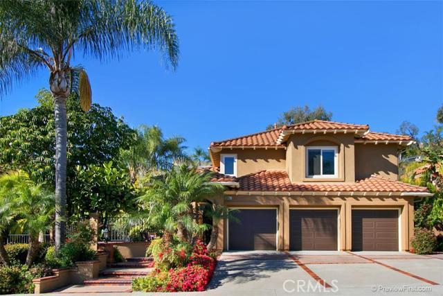 26661 White Oaks Drive Laguna Hills CA  92653