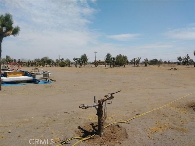 3800 Coyote Road